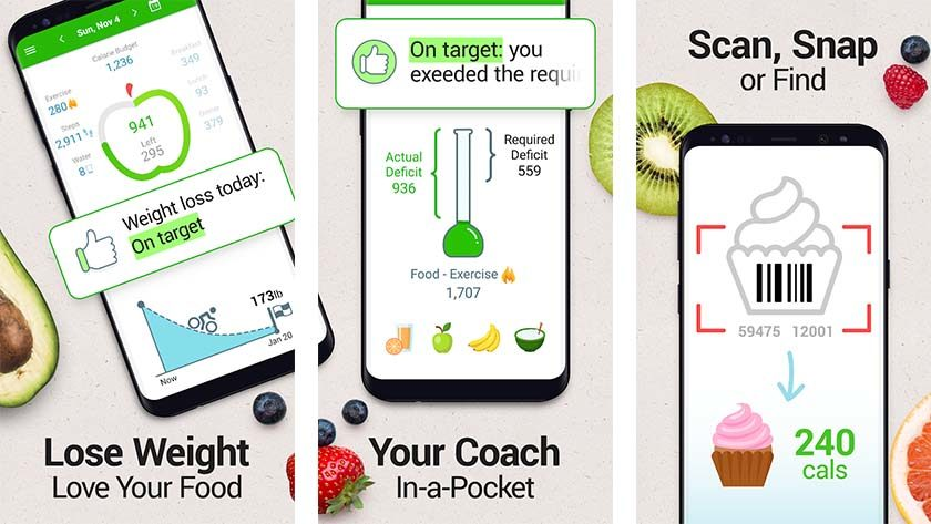 My Net Diary - calorie counting app