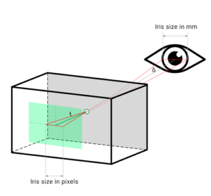 MediaPipe Iris Distance Determination