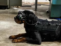 AR Goggles for Military Dogs