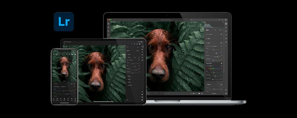 Adobe Photoshop Camera and Adobe Lightroom
